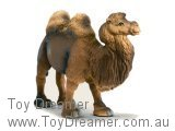 Camel: Bactrian Camel (with Tag!)