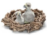 Baby eagles in nest